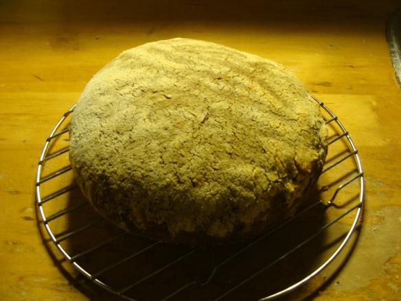 first natural sourdough loaf