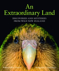 An Extraordinary Land
