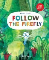 cv_follow_the_Firefly