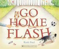 cv_go_home_flash