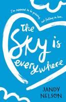 cv_the_sky_is_everywhere
