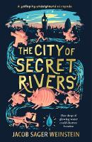 cv_the_city_of_secret_rivers