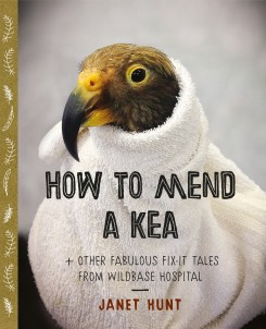 cv_how_to_mend_a_kea