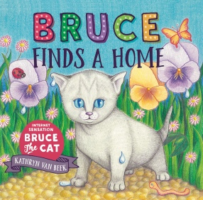 cv_bruce_finds_a_home.jpg