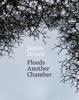 cv_floods_another_chamber