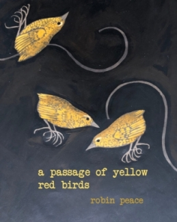 cv_a_passage_of_yellow_red_birds