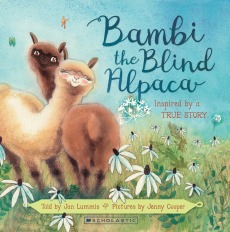 Bambi the Blind Alpaca HR.jpg